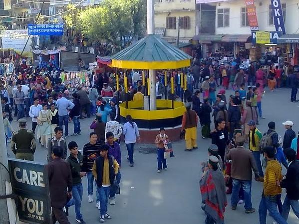 Lavi Fair